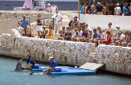 Explore Curacao Island while staying with Sunny Curacao, enjoy the activities on Curacao